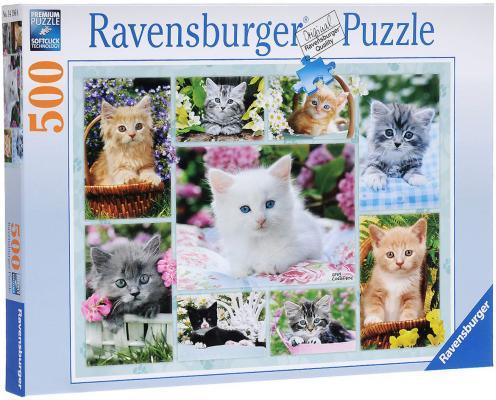 Пазл Ravensburger Галерея котят 500 элементов пазл ravensburger пазл ravensburger три лошади 500 элементов 145669 500 элементов