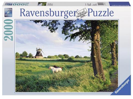 Пазл Ravensburger Сельский пейзаж 2000 элементов пазл 200 элементов ravensburger мой первый питомец 12810