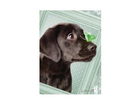Пазл Ravensburger Счастливый щенок 500 элементов