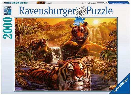 ���� Ravensburger ����� � �������� 2000 ���������
