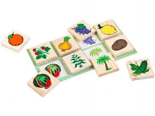 Фото Настольная игра Томик развивающая Лото. Растительный мир 6-2222-1