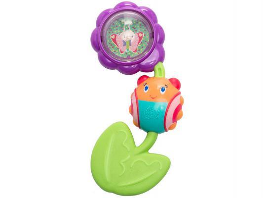 Купить Игрушка-прорезыватель Bright Starts Божья коровка на цветочке разноцветный с рождения 9285, пластик, унисекс, Прорезыватели