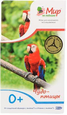 Развивающие карточки Умница Мир на ладошке Чудо птицы 0430  развивающий набор умница мир на ладошке чудо птицы