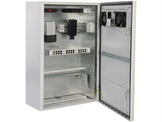 Шкаф уличный всепогодный настенный 6U ЦМО ШТВ-Н-6.6.3-4ААА 600х300mm