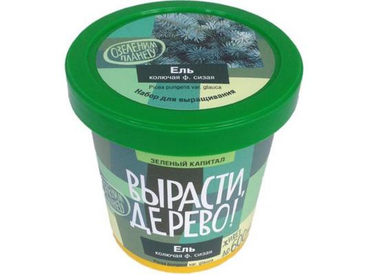 Набор для выращивания ВЫРАСТИ ДЕРЕВО Вырасти, дерево! Ель колючая zk-004 наборы для выращивания растений вырасти дерево набор для выращивания шалфей