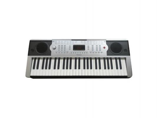 Синтезатор Rolsen RKB5401 54 клавиша USB серебристый