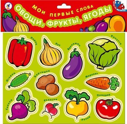 Купить Набор магнитов Дрофа Мои первые слова. Овощи, фрукты, ягоды 1318, разноцветный, Мольберты и доски для детей