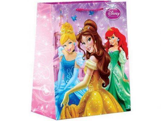 Пакет подарочный Весёлый Праздник Disney Принцессы 33x46х20 см 1 шт CLRBG-DP-03 от 123.ru