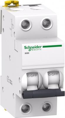 Автоматический выключатель Schneider Electric iK60 2П 6A C A9K24206 цена