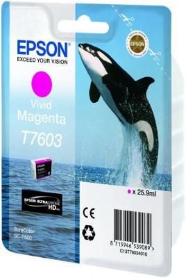 Картридж Epson C13T76034010 для Epson SC-P600 пурпурный картридж epson t009402 для epson st photo 900 1270 1290 color 2 pack