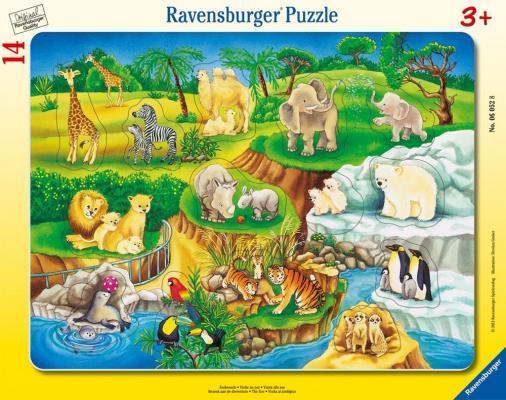 Пазл Ravensburger Зоопарк 14 элементов 06052 развивающий пазл русский стиль алфавит с животными 24 элементов