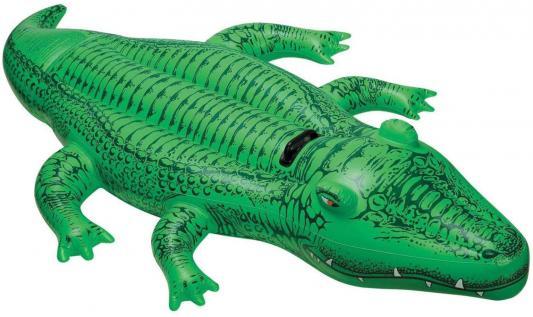 н.крокодил с держ.168х86см от 3лет с58546