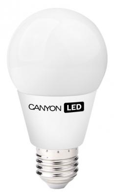 Лампа светодиодная шар Canyon AE27FR9W230VW E27 9W 2700K AE27FR9W230VW