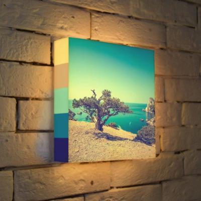 Лайтбокс Дерево на берегу 25x25-035