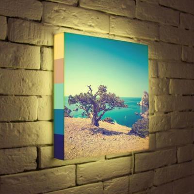 Лайтбокс Дерево на берегу 35x35-035