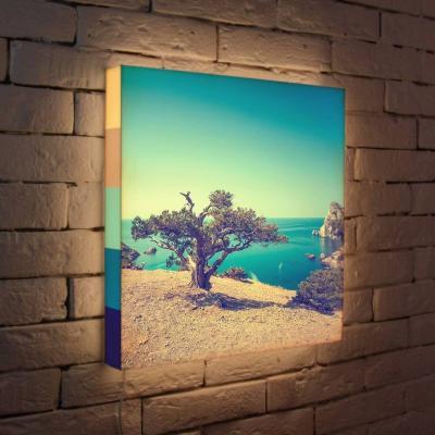Лайтбокс Дерево на берегу 45x45-035