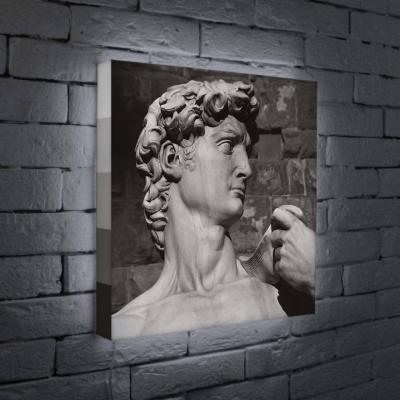 Лайтбокс Голова Давида 45x45-037