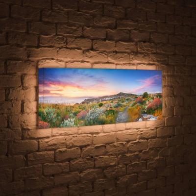 Лайтбокс панорамный Цветы на закате 35x105-p002