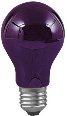 Лампа накаливания груша Paulmann AGL E27 75W 59070