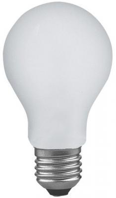 Лампа накаливания груша Paulmann AGL Stossfest E27 100W 2700K ударопрочная 40020