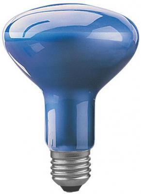 Лампа накаливания рефлекторная Paulmann R95 для растений E27 75W 3500K 50070