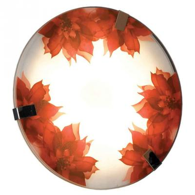Настенный светильник Lussole Lgo LSN-5252-01