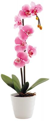 Настольная лампа СТАРТ Орхидея 2 розовый
