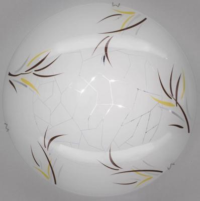 Настенный светильник Citilux Ива CL917009