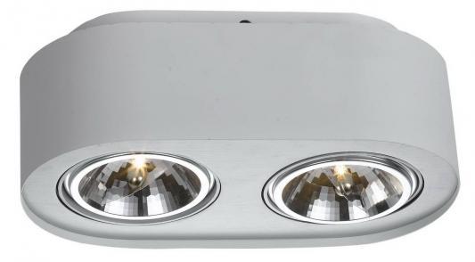 Потолочный светильник Arte Lamp Cliff A5643PL-2WH cliff нк 302 40