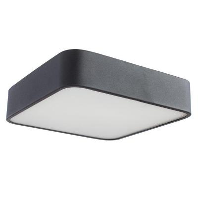 Потолочный светильник Arte Lamp Cosmopolitan A7210PL-2BK накладной светильник arte lamp cosmopolitan a7210pl 2cc