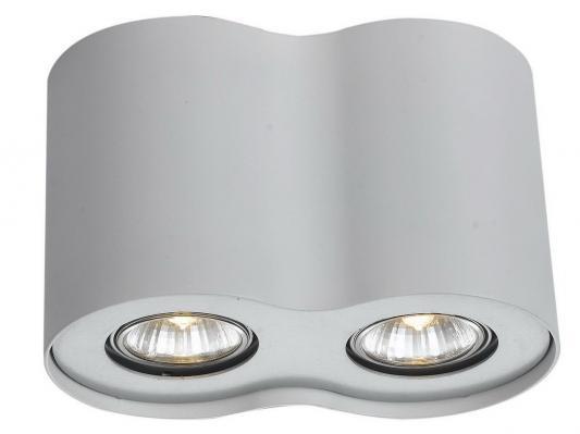 Потолочный светильник Arte Lamp Falcon A5633PL-2WH накладной светильник arte lamp falcon a5633pl 2wh