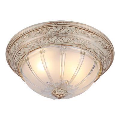 Купить Потолочный светильник Arte Lamp Piatti A8014PL-2WA