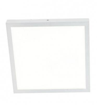 Купить Потолочный светильник Favourite Flashled 1349-24C