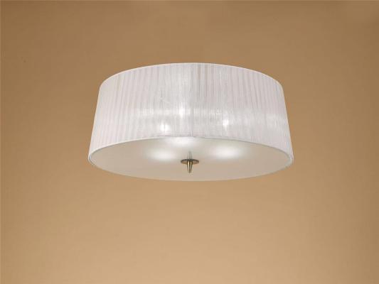 Потолочный светильник Mantra Loewe 4740