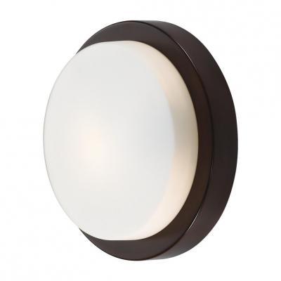 Потолочный светильник Odeon Holger 2744/1C