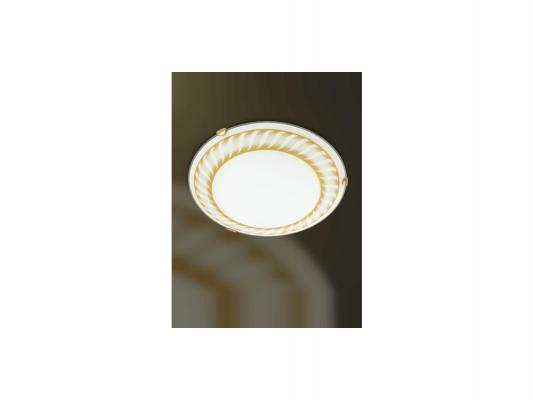 Потолочный светильник Sonex Turbina 271