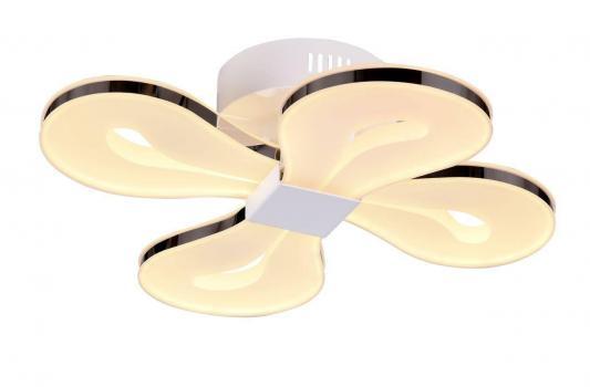 Светодиодный светильник ST Luce Birin SL862.502.04
