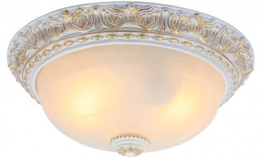 Потолочный светильник Arte Lamp Torta A7121PL-2WG
