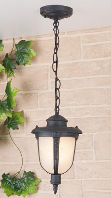 Уличный подвесной светильник Elektrostandard Atlas 4690389042843