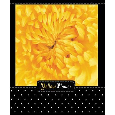 Тетрадь общая Action! Flower 48 листов клетка гребень ANS5-4801/5 в ассортименте