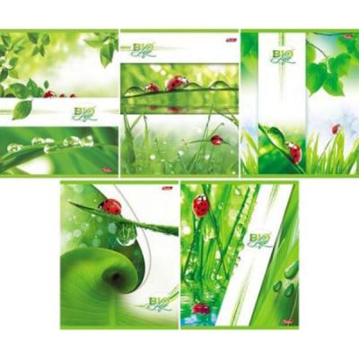 Тетрадь общая Хатбер Bio Life 96 листов клетка скоба 038246 в ассортименте тетрадь 12 листов а5 крупная клетка хатбер серия зеленая 10шт в блистере 12т5b8