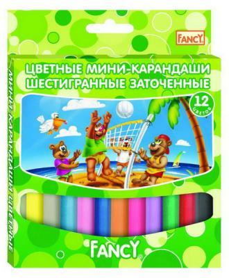 Набор цветных карандашей Action! Fancy 12 шт укороченные FCP121-12