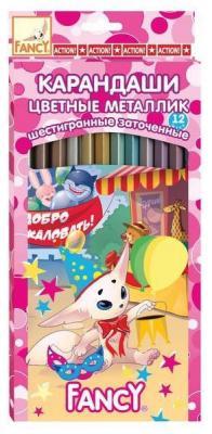 Набор цветных карандашей Action! Fancy 12 шт FCP201-12 FCP201-12
