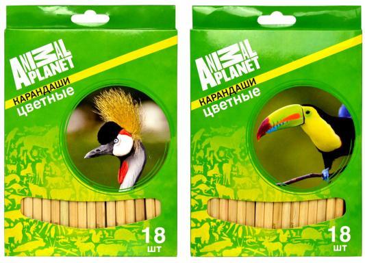 Набор цветных карандашей Action! Animal Planet 18 шт AP-ACP105-18 AP-ACP105-18 набор карандашей цветных animal planet 12цв