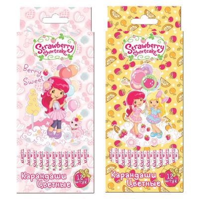 Набор цветных карандашей Action! Strawberry Shortcake 12 шт SW-ACP205-12 SW-ACP205-12 набор цветных карандашей action strawberry shortcake 6 шт sw acp205 06 sw acp205 06