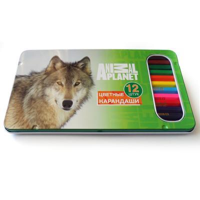 Набор цветных карандашей Action! Animal Planet 12 шт AP-ACP305-12 AP-ACP305-12 цены онлайн