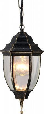 Уличный подвесной светильник Arte Lamp Pegasus A3151SO-1BN