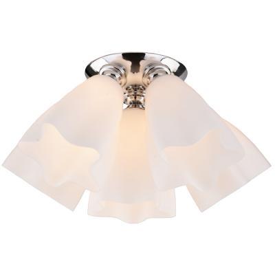 Купить Потолочная люстра Arte Lamp 17 A3469PL-6CC