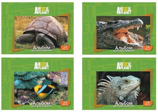Альбом для рисования Action! ANIMAL PLANET A4 24 листа AP-AA-24 в ассортименте AP-AA-24