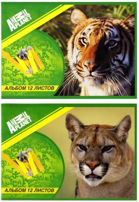 Альбом для рисования Action! ANIMAL PLANET A4 12 листов AP-AA-12/1 в ассортименте AP-AA-12/1